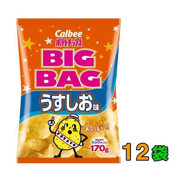 【送料無料(沖縄・離島除く)】カルビー ポテトチップス BIGBAG(ビック・ビッグ) 170g うすしお味 1ケース(12袋)