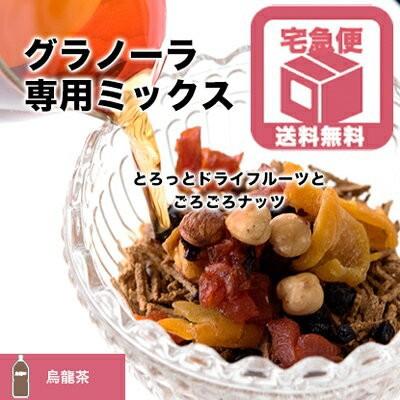 グラノーラ 専用 ドライフルーツ & ナッツ ミックス 烏龍茶タイプ 320g 送料無料 シリアル に混ぜて美容成分たっぷり グラノーラに