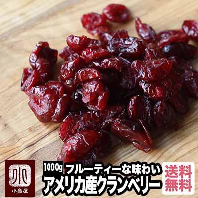 ドライクランベリー アメリカ産 1kg ドライフルーツ 保存料不使用 No1ブランド