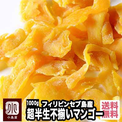 ドライマンゴー 超半生 不揃い 1kg ドライフルーツ 種の周り 切り落とし 果肉 甘い フィリピン しっとり トロピカル