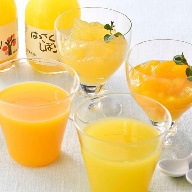100%ピュアジュースと寒天ジュレのセット みかん ジュース ゼリー 柑橘 スイーツ ギフト お取り寄せ 産直 グルメ 伊藤農園