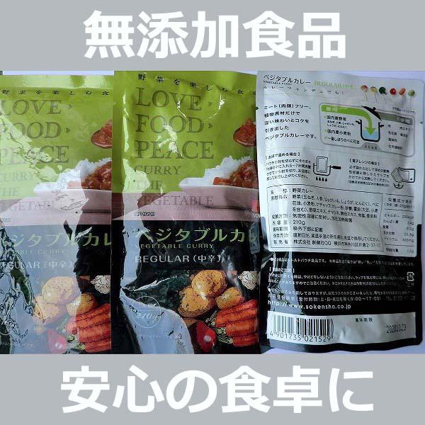 無添加 ベジタブルカレーREGULAR【中辛】レトルト 210g×3袋