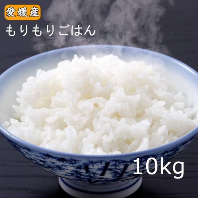 米 愛媛県産 お米 白米 精米 ブレンド米 業務用 10kg もりもりごはん10kg 送料無料 (北海道・東北・沖縄除く)