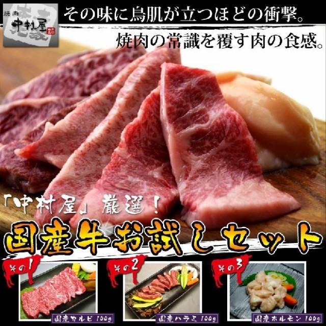 お歳暮 ギフト 内祝い 牛肉 国産牛お試しセット(カルビ ハラミ ホルモン各100g)