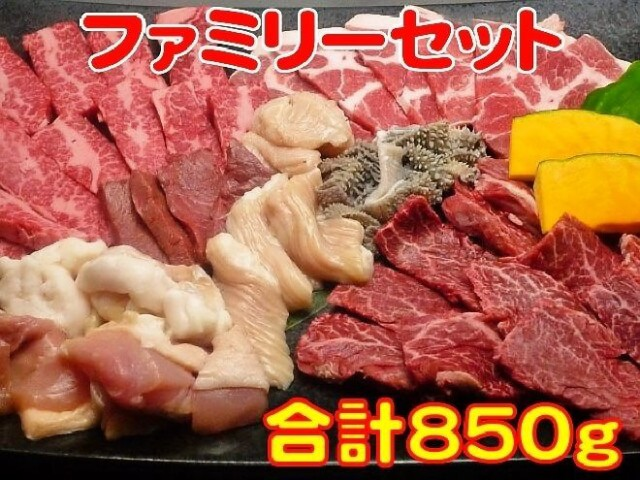 お歳暮 ギフト 内祝い ファミリーセット カルビ200g ハラミ200g 豚ロース100g 鶏もも肉100g ホルモ