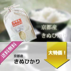 お米 10kg 京都産 キヌヒカリ 令和元年産 玄米 5kg×2袋 選べる精米