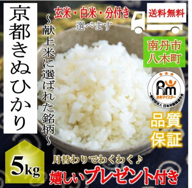 お米 5kg 京都産 キヌヒカリ 令和元年産 玄米5kg 選べる精米