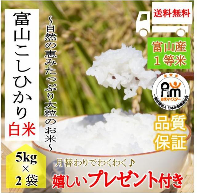 お米 10kg 富山県産 コシヒカリ 令和2年産 白米5kg×2袋