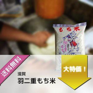 お米 もち米 滋賀県産羽二重もち米 令和2年産 10kg(1kg×10袋)