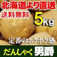 男爵 だんしゃくいも 5kg ジャガイモ 北海道産 じゃがいも