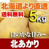 北あかり5kg じゃがいも 北海道産 贈り物 内祝 お返し ギフト 送料無料