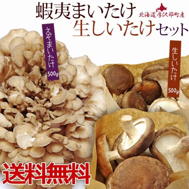 えぞまいたけ(舞茸)・生しいたけセット 北海道産 無農薬 北海道産マイタケ 国産 きのこ | マイタケ キノコ 北海道 食材 野菜 食品 ・フー