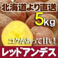 レッドアンデス 5kg 北海道産 ジャガイモ 送料無料 贈り物 内祝 お返し ギフト