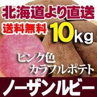 ノーザンルビー 10kg じゃがいも 北海道産 贈り物 内祝 お返し ギフト 送料無料