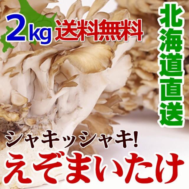 【 蝦夷 舞茸 ( えぞ まいたけ ) 2kg(3〜4株)】 無農薬 北海道産 厚沢部町 送料無料 国産 きのこマイタケ キノコ 北海道 食材 野菜 食