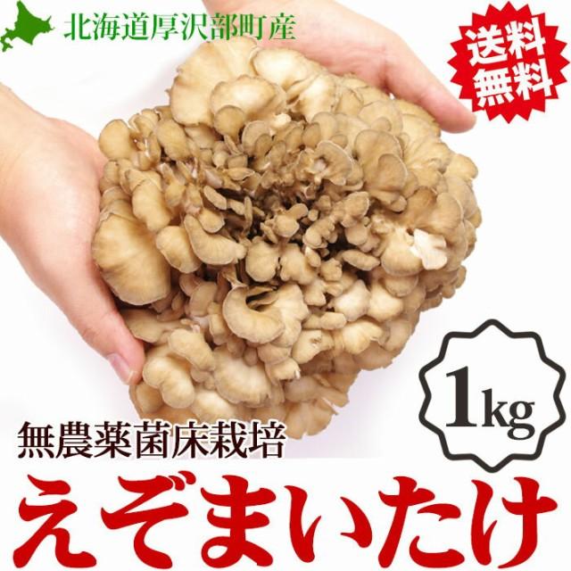 【舞茸 えぞまいたけ 1kg(2株)】北海道産 無農薬 菌床栽培 きのこ マイタケ 北海道 蝦夷 キノコ 食材 野菜 ギフト 内祝い 取り寄せ お
