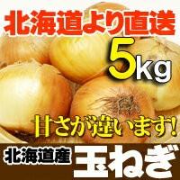 たまねぎ 北海道産 5kg 玉ねぎ 贈り物 ギフト 札幌のたまねぎ