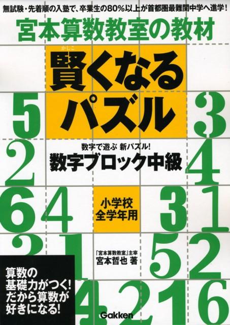宮本算数教室の教材 賢くなるパズル 数字ブロック 中級