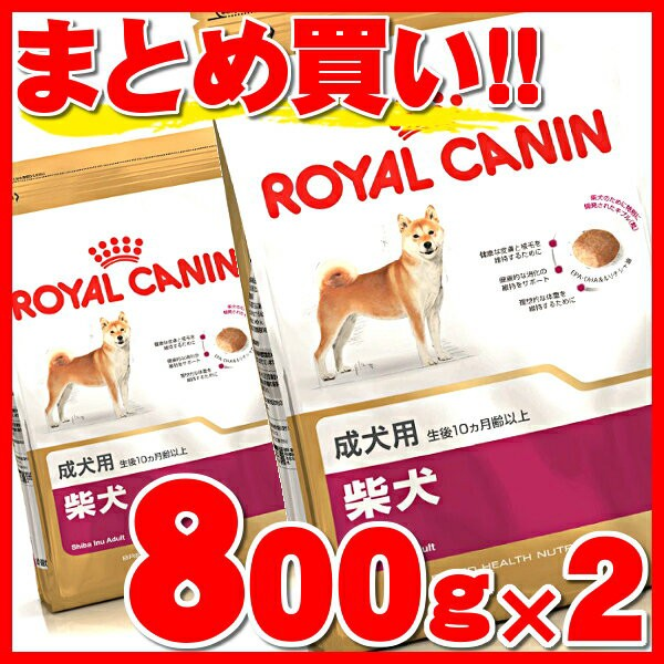 ロイヤルカナン 柴犬 成犬 800g×2個セット 正規品 犬 BHN ドッグ フード ドライ アダルト 成犬用 【予約】6月下 rcdb27