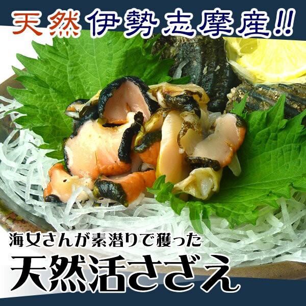 活サザエ(中) 1個 海鮮BBQなどに  [魚介類]