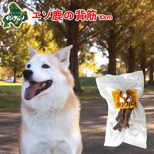 国産 北海道産 エゾ鹿 の 背筋10cm40g入/えぞ鹿肉/鹿肉/エゾシカ肉/ジビエ