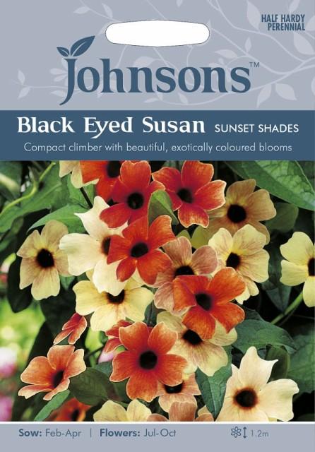 【輸入種子】Johnsons Seeds BLACK EYED SUSAN Sunset Shades ブラックアイド・スーザン(ツンベルギア) サンセット・シェイド ジョンソ