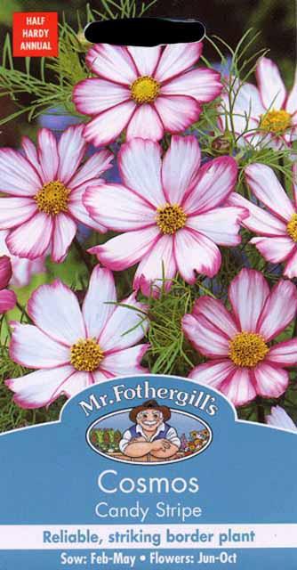【輸入種子】Mr.Fothergills Seeds Cosmos Candy Stripe コスモス キャンディ・ストライプ ミスター・フォザーギルズシード