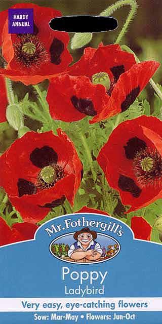 【輸入種子】Mr.Fothergills Seeds Papaver rhoeas(Poppy) Ladybird ポピー レディ・バード ミスター・フォザーギルズシード