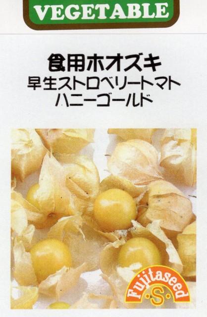 【輸入種子】食用ホオズキ 早生ストロベリートマト ハニーゴールド 藤田種子のタネ