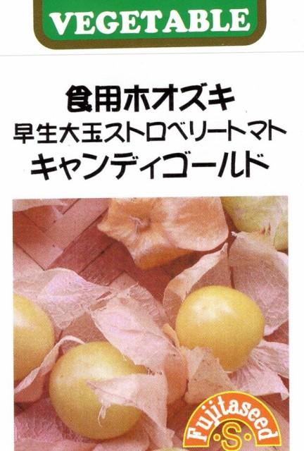 【種子】 食用ホオズキ 早生大玉ストロベリートマト キャンディゴールド 藤田種子のタネ