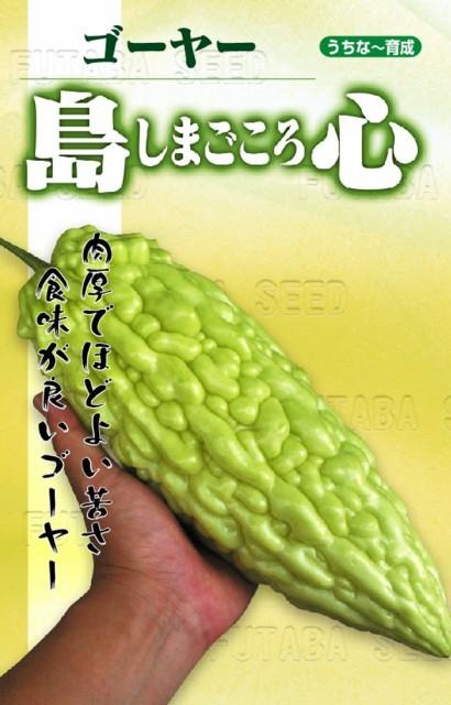 【種子】ゴーヤー 島心 フタバ種苗のタネ