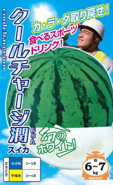 【種子】スイカ クールチャージ潤 ナント種苗のタネ