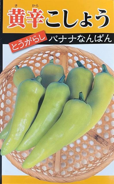 【種子】とうがらし 黄辛こしょう バナナなんばん 日本タネセンターのタネ
