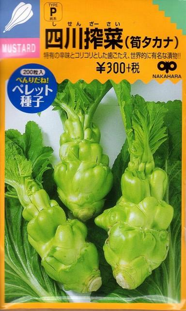 【種子】四川搾菜(筍タカナ) 中原採種場のタネ