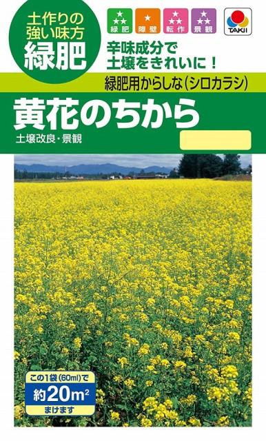 【種子】緑肥用からしな(シロカラシ)黄花のちから タキイ種苗のタネ
