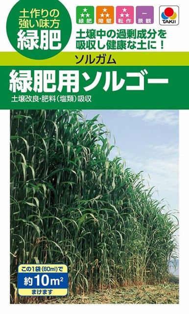 【種子】ソルガム 緑肥用ソルゴー(60ml) タキイ種苗のタネ