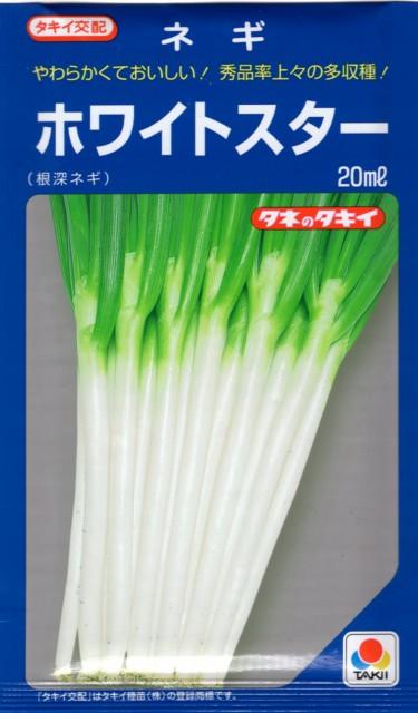 【種子】ネギ ホワイトスター(根深ネギ)20mlタキイ種苗のタネ【お取り寄せ品】