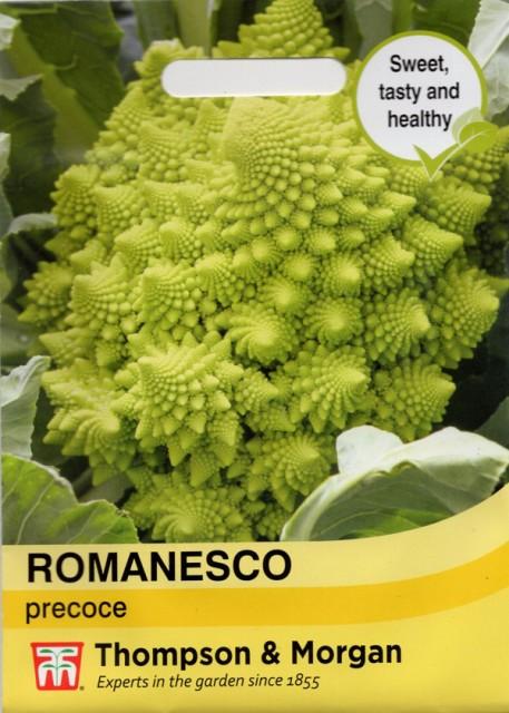 【輸入種子】 Thompson Morgan Romanesco precoceブロッコリー ロマネスコ・プレコーチェ トンプソン&モーガン