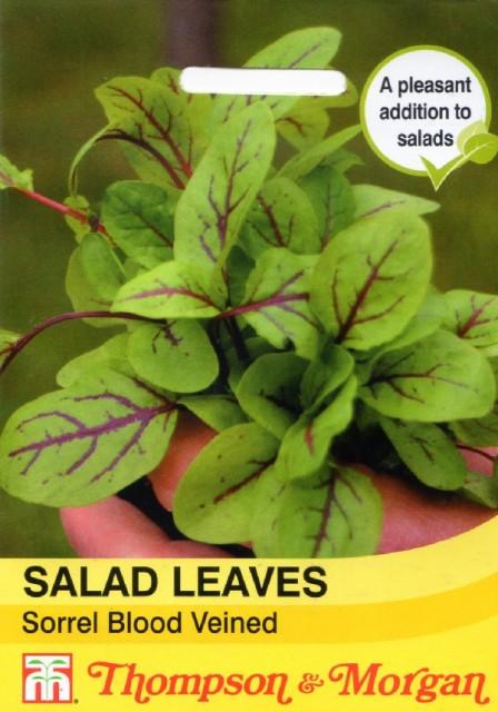 【輸入種子】Thompson Morgan SALAD LEAVES Sorrel Blood Veined サラダ・リーブス ソレル レッド・ヴェイン トンプソン&モーガン