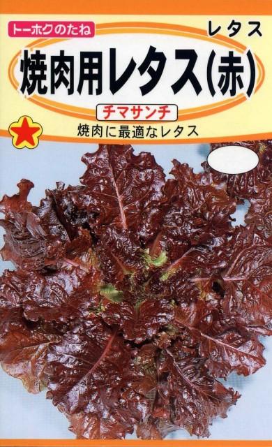 【種子】焼肉用レタス(赤)チマサンチ トーホクのタネ