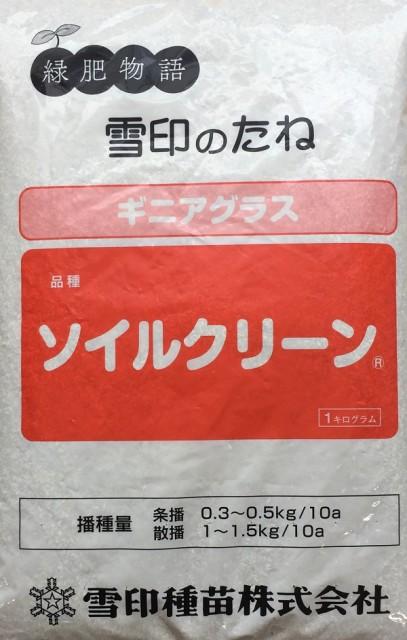 【種子】ギニアグラス ソイルクリーン 1kg 雪印種苗のタネ