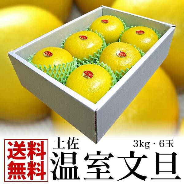 【送料無料】★最高級贈答用★高知特産 ハウス文旦6玉/3kg