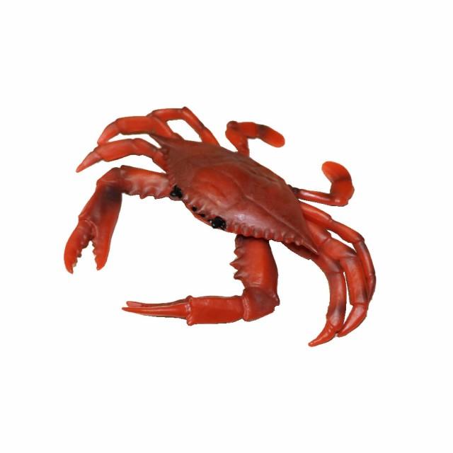 カニ 蟹 ワタリガニ ガザミ 魚模型 魚フィギュア faf-c1 寸法:約17x14x3cm