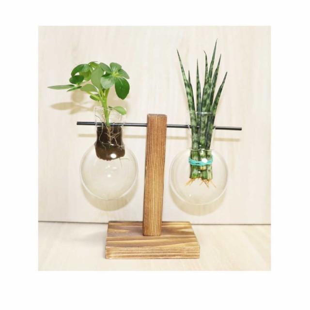 木製花瓶スタンド 水耕栽培花瓶 卓上花瓶 植物栽培ガラス 水栽培容器 ハイドロカルチャー フラスコ2個 fbg-3