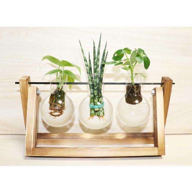 木製花瓶スタンド 水耕栽培花瓶 卓上花瓶 植物栽培ガラス 水栽培容器 ハイドロカルチャー フラスコ3個 fbaa-3