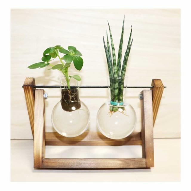 木製花瓶スタンド 水耕栽培花瓶 卓上花瓶 植物栽培ガラス 水栽培容器 ハイドロカルチャー フラスコ2個 fbaa-2