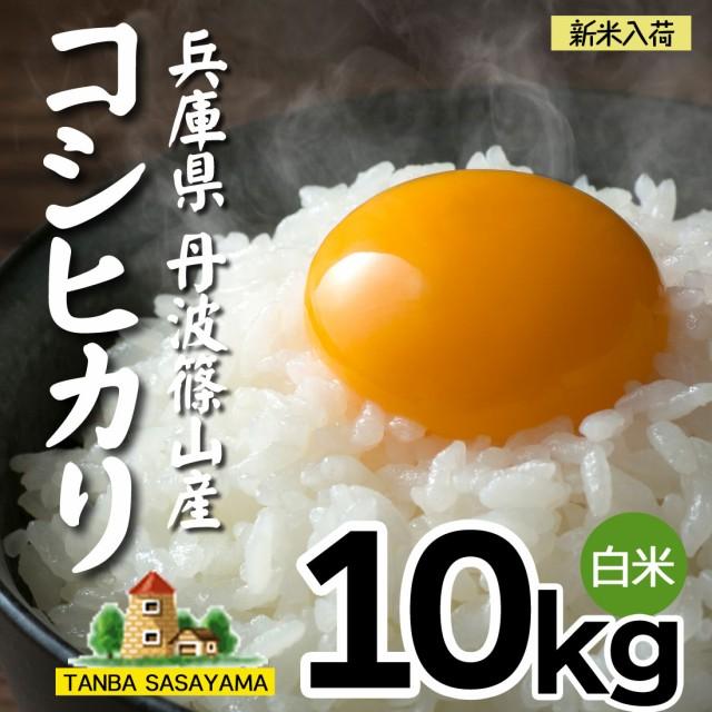 令和2年産 新米 10kg 人気 丹波篠山産 コシヒカリ 丹波 兵庫県 送料無料