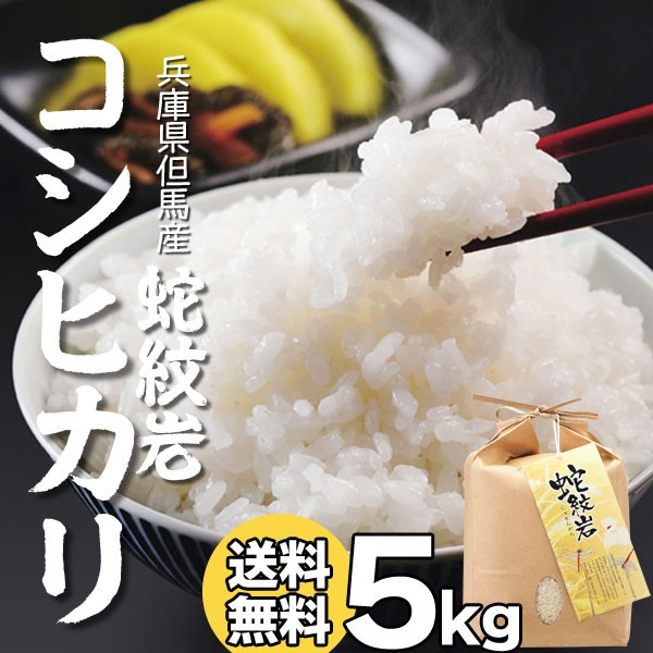 希少 蛇紋岩米 米5kg コシヒカリ 令和元年 兵庫県 但馬産 お手頃 5キロ