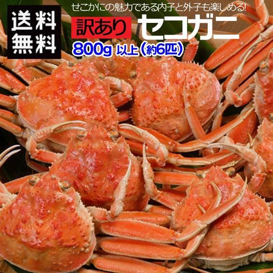 送料無料 訳あり かに カニ 蟹 せいこ蟹 セコガニ せこがに せいこがに 山陰 日本海 兵庫県 ボイル 計800g以上 約6匹 サイズ 色々