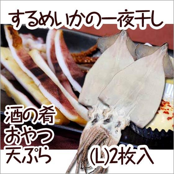 《送料無料 ポイント消化》3000円ぽっきり 一夜干し するめ 剣先 山陰 日本海 Lサイズ 100g ×2枚セット